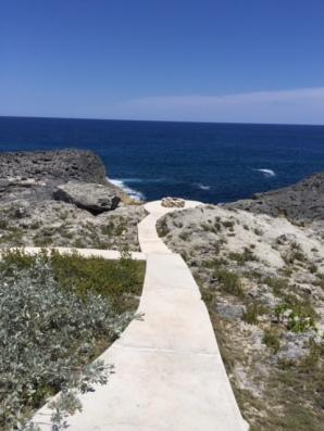 Ocean Tally vista